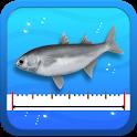 Fishing Ruler - 물고기 길이 재기 icon