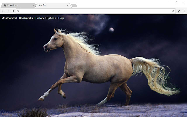 Horses hd wallpapers horse new tab theme chrome web store altavistaventures Image collections