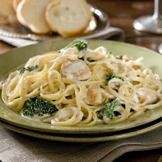Fettuccine Alfredo Cream Of Mushroom Soup Recipes