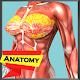 Download Human Anatomy Encyclopedia - Organs & Skeleton For PC Windows and Mac