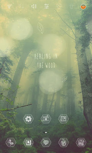 Healing in the woods theme