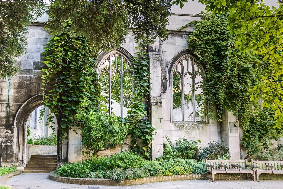 Ivy covered church ruins in London
