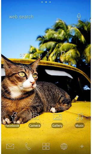 Cute Theme-Cat on a Car- 1.0.0 Windows u7528 1