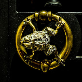 Door to Neverland by Andrei Ciuta - Artistic Objects Other Objects ( abstract, fantasy, details, metal, frog, metal work, texture, door, knob, golden )