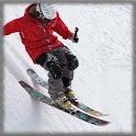 Alpine Skiing Wallpaper icon