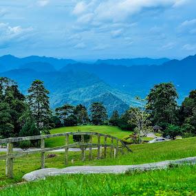 Borneo Highland by Papin Michael - Landscapes Mountains & Hills ( hills, nature, borneo highland, malaysia, morning, landscape, sarawak, borneo )
