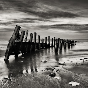At the Beach by Andrew Holland - Black & White Landscapes