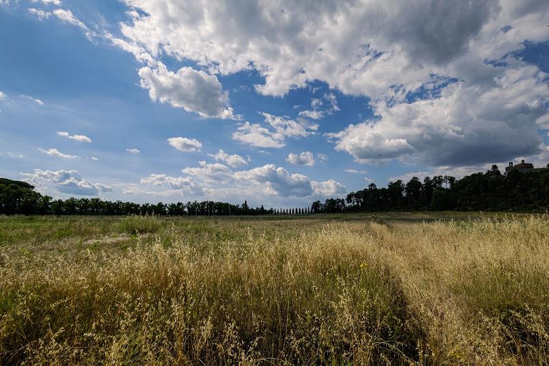 tra nuvole e grano di elisabetta_de_carli