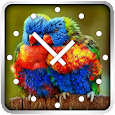 Parrots Clock Widget icon