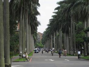 Photo: National Taiwan University campus