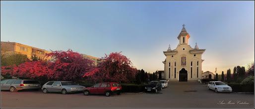 Photo: Măr decorativ (Malus Royalti) - din Turda, de pe Calea Victoriei, Mr.3, parcul Bisericii Ortodoxe - 2018.04.19