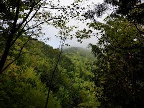 天狗森山山頂方面