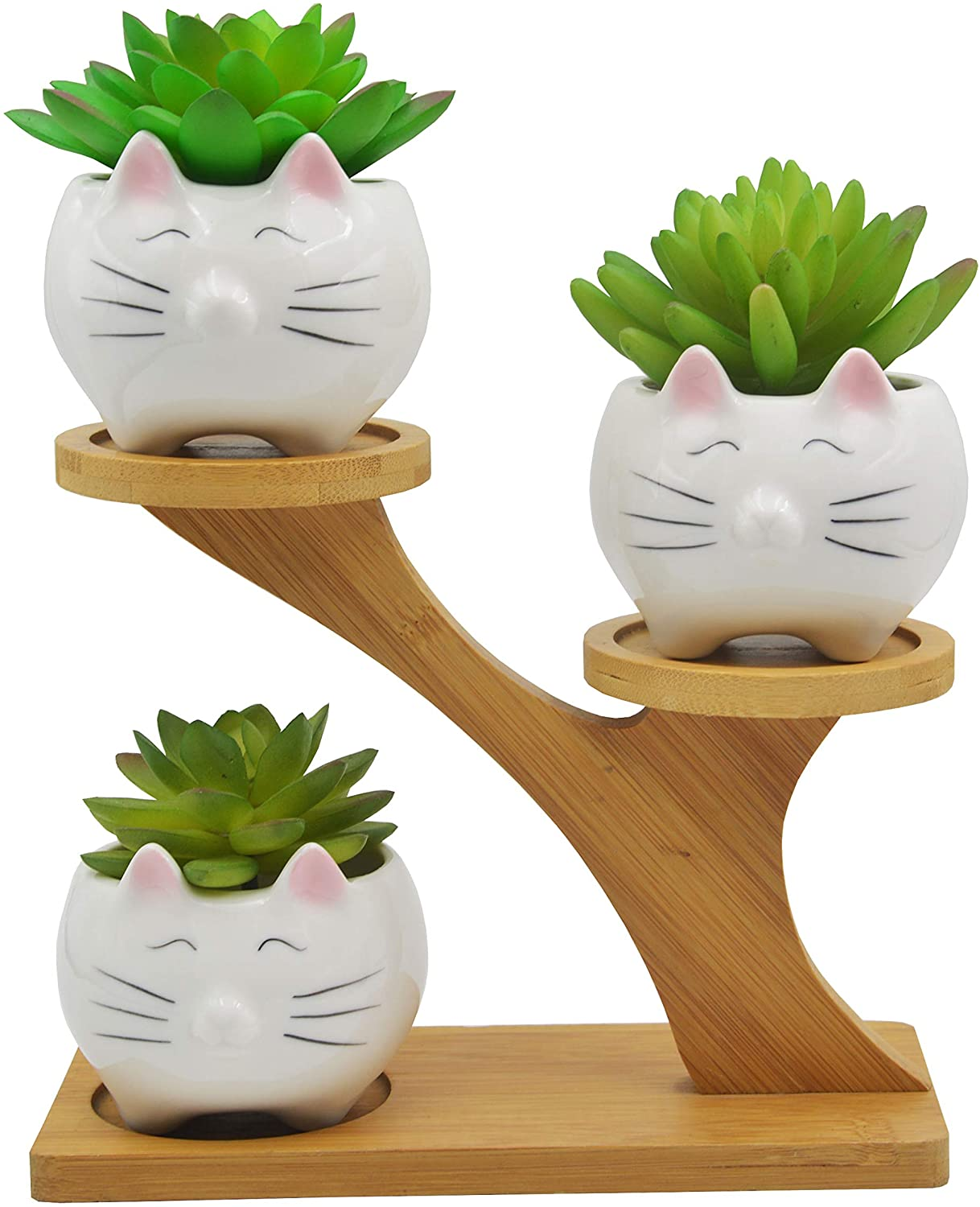cute gifts for cat owners and plant lovers