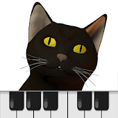 Cat Piano Keyboard play