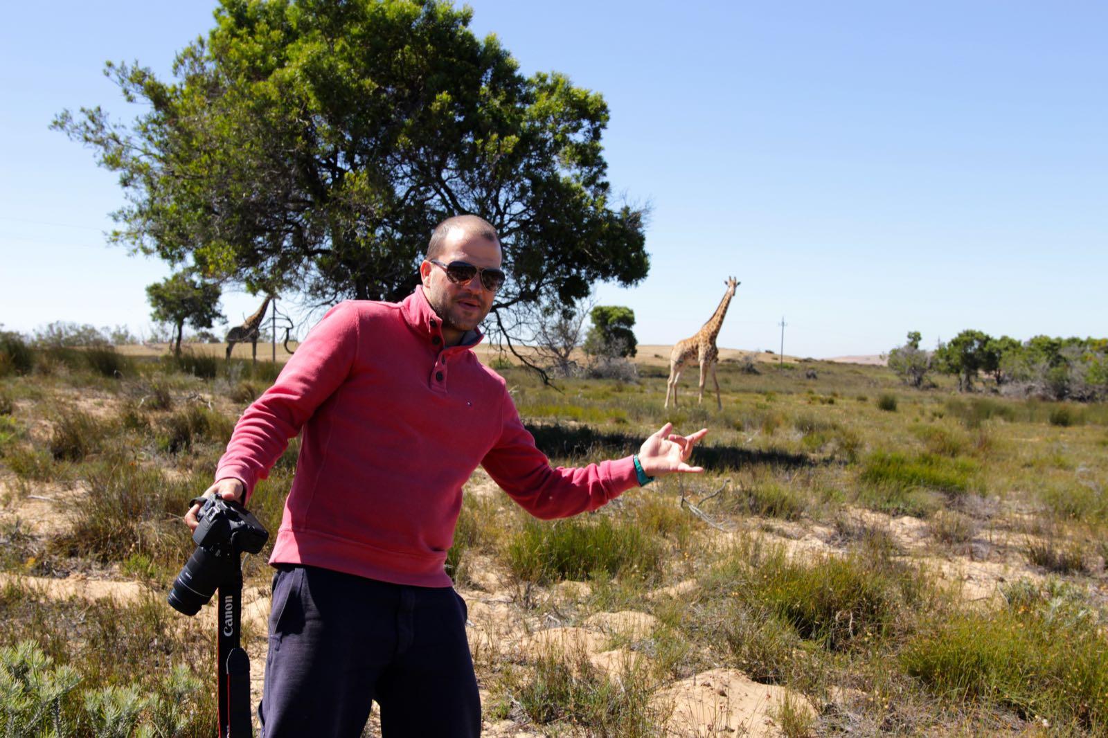Jonas und die Giraffen
