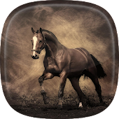 Horse Live Wallpaper 🐎 Pictures of Horses