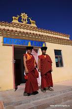 Photo: Ламы - обычные молодые парни