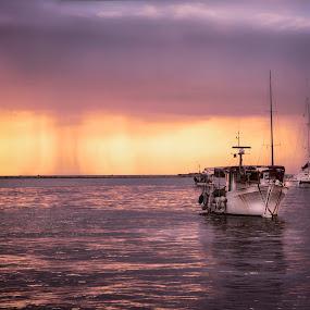 Boat and sea by Maya Cvetojevic - Transportation Boats