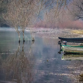 Scadar lake  by Zoran Savic - Uncategorized All Uncategorized ( montenegro, boats, scadar lake, sunrise, skadarsko jezero )