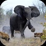 Angry Elephant Jungle Rampage