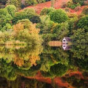 Autumn Colours by Graham Kidd - Landscapes Waterscapes ( water, nature, autumn, trees, reflections,  )