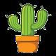 Cactus IPTV for PC