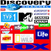 TV Poland Channel 2019