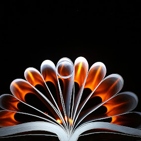 Book And Ring by Mohd Norsabree Sailan - Products & Objects Education Objects ( amatuer, love, ring, books, sabree, creative, simple, pwcstilllife, light, fire,  )