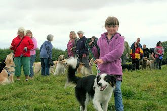 Photo: In the forefront Galu Border Collie with handler Georgina