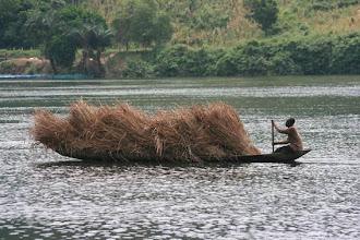 Photo: Volta river, Ghana