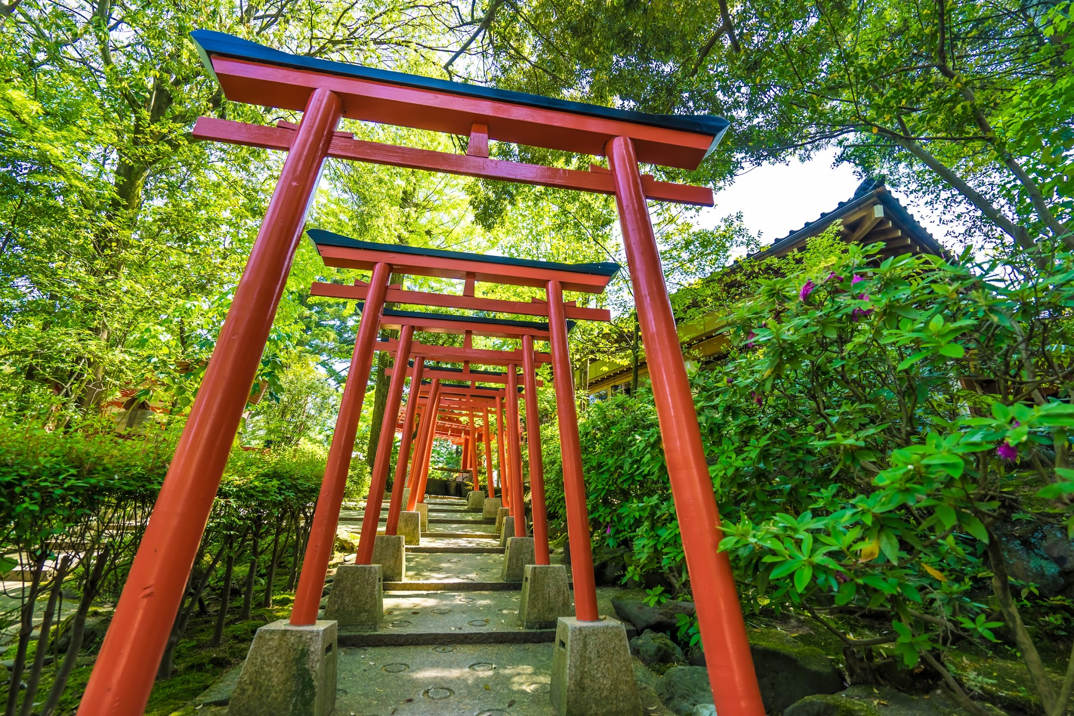 Kanazawa Shrine2