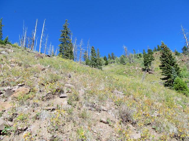 Final steep climb up Hen's Hole Peak
