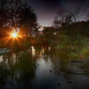 Riverside sunset  by Joachim Persson - Landscapes Sunsets & Sunrises ( water, sunset, forest, rays, river )