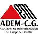 Asoc. Esclerosis Múltiple - CG (app)