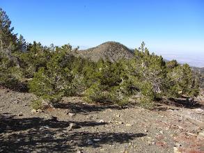 Photo: View northwest from the summit of Dawson Peak toward Pine Mt.