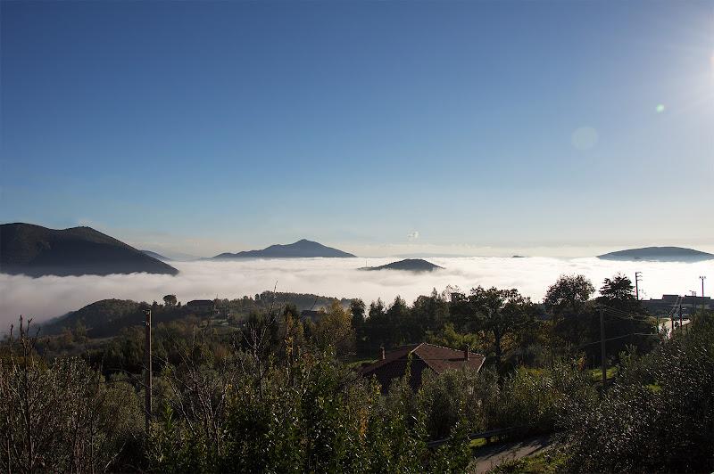 Nebbia di Photo Raf