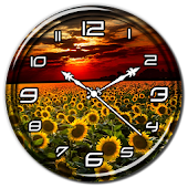 Sunflower Clock Live Wallpaper