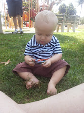 Photo: Henry studying the grass