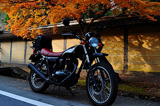 Photo: Autumn is here  Kawazaki 250TR - カワサキTR