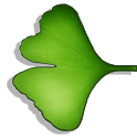 Ginkgo Audiobook Player icon
