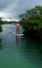 Photo: Anne paddling in the mangroves at Little Harbor