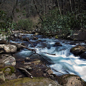 Little Rapids by Tiffany Bailey - Landscapes Waterscapes