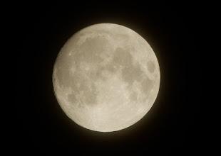 Photo: 今宵の月、十四夜月。明日は満月ですね。