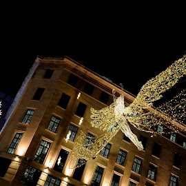 St James's Angel by DJ Cockburn - Public Holidays Christmas ( decoration, electric, carlton street, art, christmas, the christmas spirit, regent street st james, holiday, angel, england, winter, london, night, light, britain )