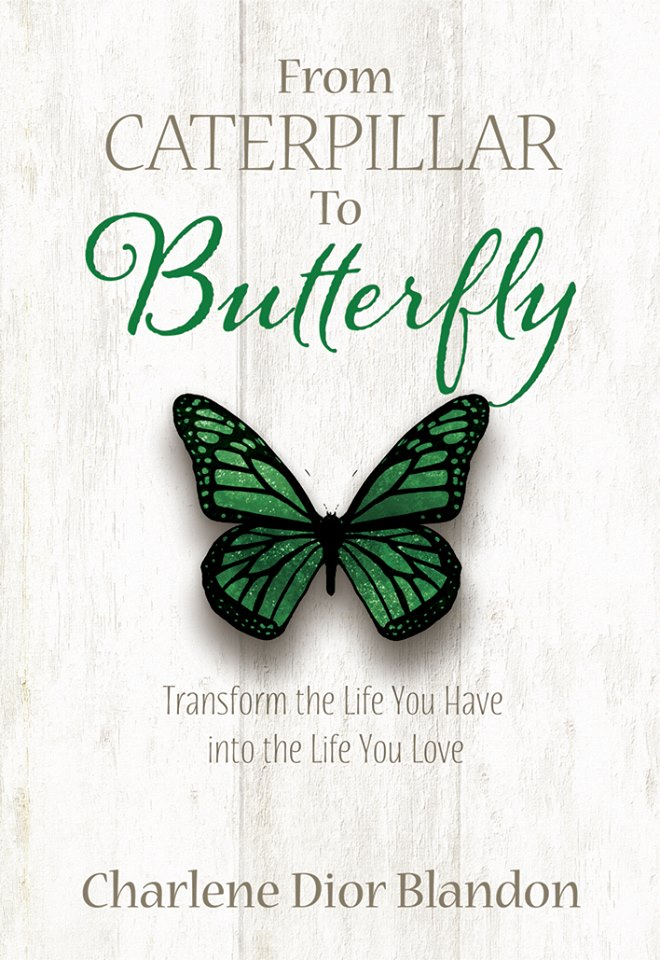 Transform the Life You Have Into the Life You Love