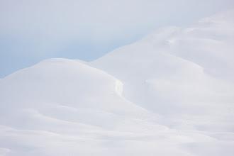 Photo: Snow