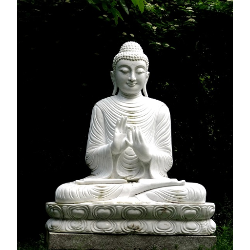 Buddha And Buddhism Books In Hindi बौद्ध साहित्य Android APK Download Free By Sahitya Adhyay