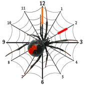 Spider Clock Widget