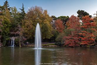 Photo: Zona del lago del Palacio de Cristal de El Retiro, Madrid. Filtros: Polarizador y GND 0.9