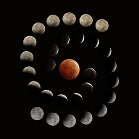 Total Lunar Eclipse by Michele Whitlow - Landscapes Starscapes ( blood moon, moon, lunar eclipse, astrophotography, total lunar eclipse )